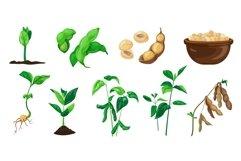 Soybean icons set, cartoon style Product Image 1