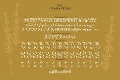 La Vilya | Handwritten Script Font Product Image 5