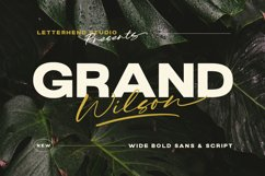 Grand Wilson - Font Duo Product Image 1