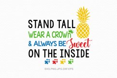 Autism, Autism svg, Autism svg bundle, Autism awareness Product Image 6