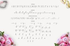 Delight Script   WEB FONT Product Image 2