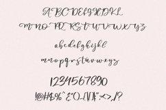 Abiland Script Product Image 7
