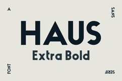 HAUS Sans Extra Bold Product Image 1
