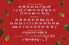 Web Font Shabrian Display Font Product Image 2