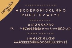 Tropikana Monoline Vintage Typeface Product Image 7
