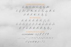 Web Font Perverance Font Product Image 3