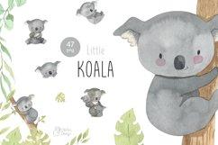 Koala clipart. Watercolor Australian animal clip art. Product Image 1