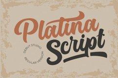 Platina Script / Layered Fonts Product Image 9