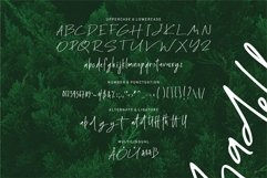 Web Font Madelin - Handwritten Font Product Image 6