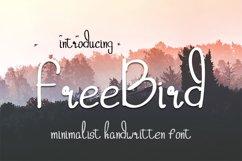 freebird handwritten font Product Image 1