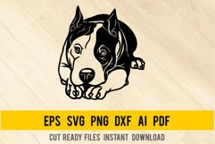 Pit Mix Dog svg, Breed Dogs SVG, Pet Pup Product Image 1