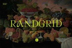 ED Randgrid Product Image 1
