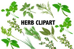 Herbs Clipart Product Image 1