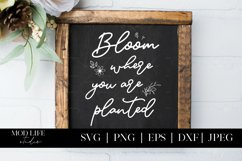 Bloom Where You Are Planted SVG Cut File - SVG PNG JPEG Product Image 1