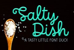 Salty Dish - script and sans font duo! Product Image 1