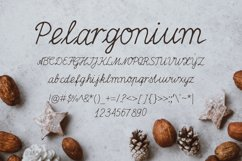 Pelargonium Font Product Image 2