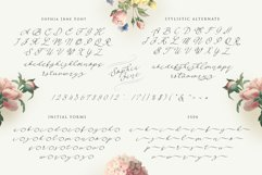 Sophia Jane Script Product Image 5