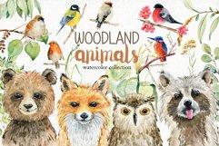 70 off. Bundle. Woodland animals. Product Image 2