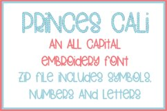 PRINCESS CALI EMBROIDERY FONT Product Image 1
