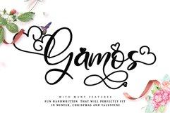 Gamos Product Image 1