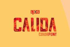 Calida Product Image 2