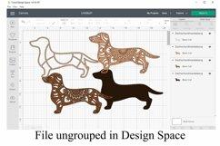 Dog Mandala Bundle Volume 4 - Five Different Breeds Product Image 6