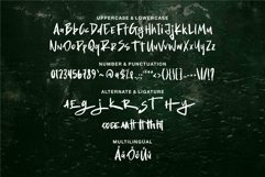 Web Font Dacter - Modern Brush Font Product Image 6