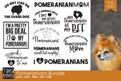 Pomeranian Bundle Product Image 1