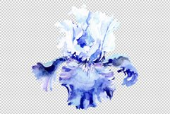 Irises blue Summer sky watercolor png Product Image 5