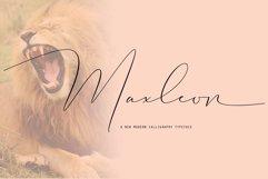Maxleon Product Image 1