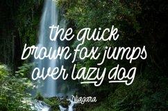 Web Font Niagara - Monoline Script Font Product Image 5