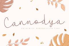 Cannodya   Handwritten Monoline Web Font Product Image 1