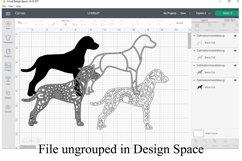 Dalmation Mandala Layered SVG - Paper Cutting - 4 Layers Product Image 2