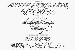 Web Font Darling Angels - a handwritten signature font Product Image 3