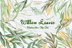 Eucalyptus Willow Watercolor Clipart Product Image 1