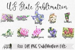 State Bundle Watercolor US State Flowers Product Image 6