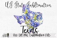 Watercolor US State Flowers - Texas Product Image 1