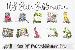 State Bundle Watercolor US State Flowers Product Image 2