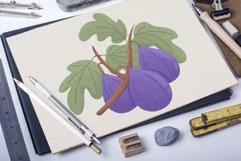 Figs hand drawn clip art Product Image 2