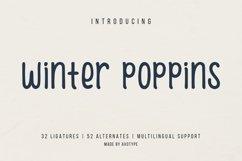 Winter Poppins | Handwritten Font Product Image 1