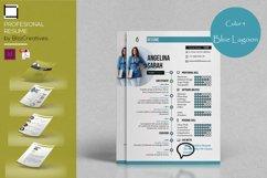 Profesional Resume Product Image 3