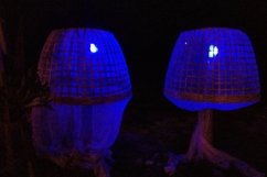 Magic blue night lights somewhere in Thailand Product Image 1