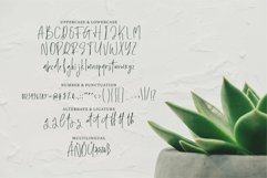 Web Font Rileigh - A Modern Signature Font Product Image 4