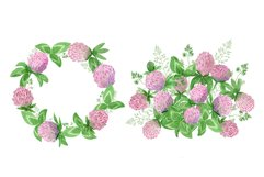 Watercolor wildflower clover. Wildflower clipart. St.Patrick Product Image 6