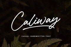 Caliway Script Font Product Image 1