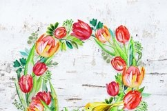 Spring Tulips clipart Product Image 5