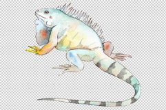 Iguana-1 Watercolor png Product Image 5