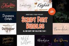 Script Font Bundles Collection Product Image 1