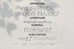 Hellstand // Script Fonts Product Image 6