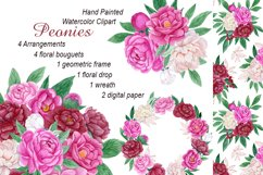 Watercolor peonies.Floral clipart.Pink,burgundy,white peony Product Image 1
